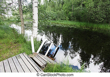 swimming pond and in water ramps - swimming pond and in the...