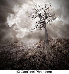 Lonely Tree with Roots Holding The Moon - A dark tree is...