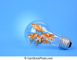 Creative Goldfish in Light Bulb on Blue - Goldfish a trapped...
