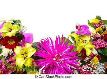 Floral greeting card with beautiful flowers Isolated on...