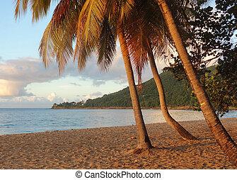 sundown beach scenery