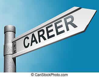 Career direction sign - 3d Career direction sign over blue...