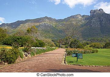 Botanical Garden - Kirstenbosch National Botanical Gardens...