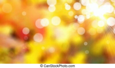 Autumn background - Sunny autumn motion background (seamless...