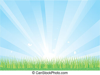 Blue sky and green grass background.Vector nature...