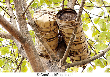 Traditional man made hive - Ethiopia: traditional man made...