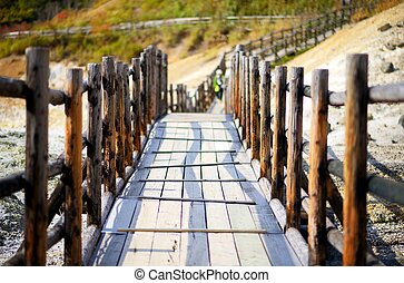 walkway - wooden path with shallow depth of field