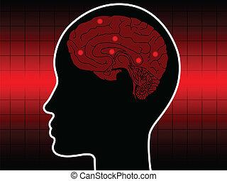 head scanned