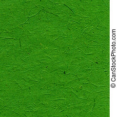 Rice Paper Texture - India Green XXXXL - High resolution...