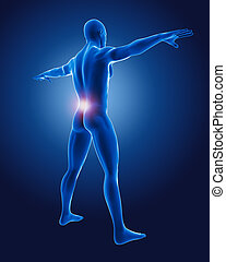 3D medical man with lower back highlighted