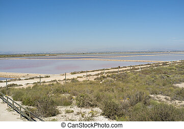 Santa Pola salt marsh - Pools of Santa Pola salt marsh under...