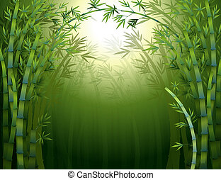 A dark bamboo forest - Illustration of a dark bamboo forest