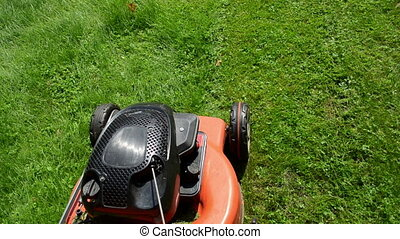 walk grass mower meadow - walk near move cut grass lawn...