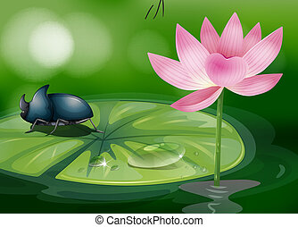 A bug above the waterlily - Illustration of a bug above the...