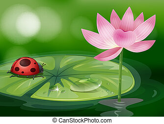 A waterlily with a red bug - Illustration of a waterlily...