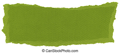 Isolated Fiber Paper Texture - Olive Drab XXXXL - Texture of...