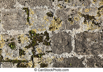 Ancient Stone Wall - Close up of an ancient stone wall...