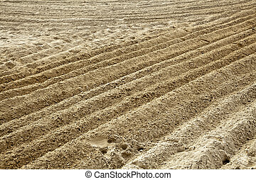 Ploughed Sand - Ploughed sand at a beach