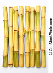 Raw sugar cane - Raw Sugar cane isolated on white