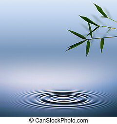 bambú, Extracto, ambiental, fondos
