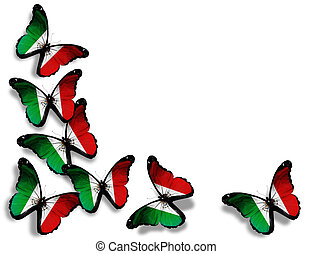 Mexico flag butterflies, isolated on white background
