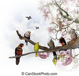 Tropical Birds Perching On A Blossoming Tree