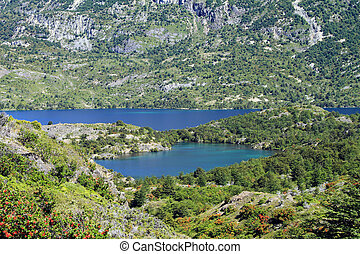 A small lake amidst the vegetation in Patagonia, South...