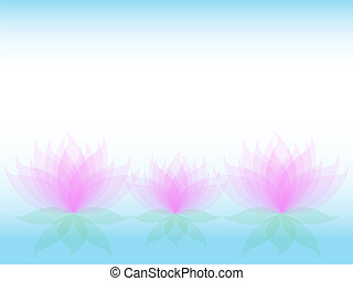 Soft waterlily card - Soft transparent water lilies flowers...