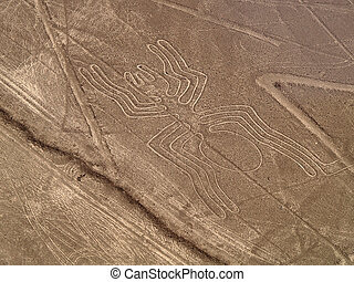 Spider at the desert - Aerial view of the Spider, Nazca...