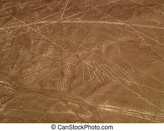 Condor at the desert - Aerial view of the Condor, Nazca...