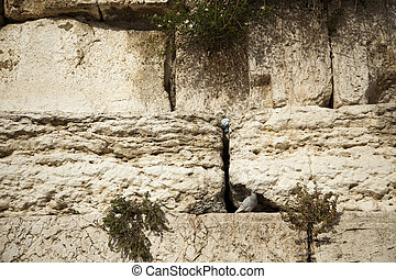 Wailing Wall Close Up - A closeup of the Wailing Wall in the...