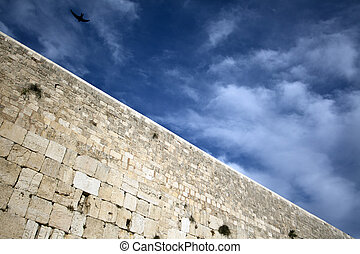 Bird above the Wailing Wall - A bird soaring above one of...
