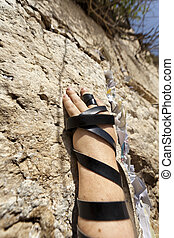 Phylacteries Wrapped Hand on the Western Wall - The left...