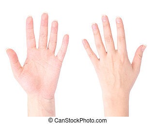 front and back of the hand on white background isolated,...