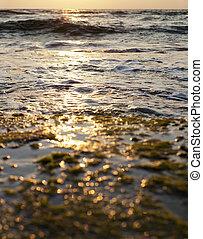 Burning Sunset - Sunbeam's harsh reflection burns the...