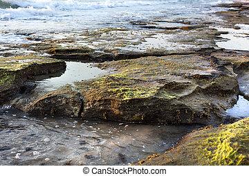 Rocky Beach at Dusk - Time of dusk at the beach. Algae...