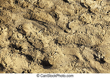 Beach Sand Close-Up - Close up on a patch of beach sand The...