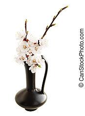 primavera,  ikebana