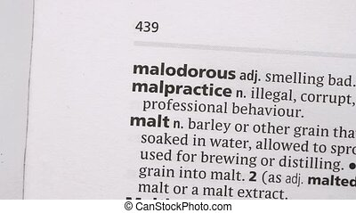 Malpractice highlighted in pink in the dictionary