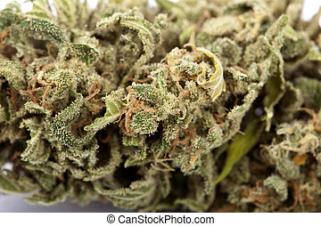 Cannabis Background - An extreme macrom shot of a cannabis...