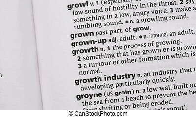 Growth highlighted in green in the dictionary