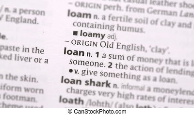 Loan highlighted in green in the dictionary