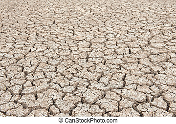 Closeup of dry soil  - Dry soil texture of a barren land