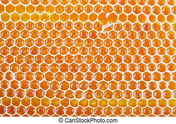 fresh honey in comb - fresh golden honeycomb shot from close...