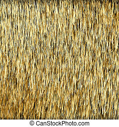 Abstract Background. Golden Threads. Scratched Gold. Vector...