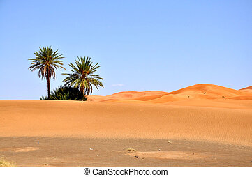 Sahara - The Great Desert