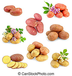 Potatoes different set - Yellow, pink and red potatoes,...