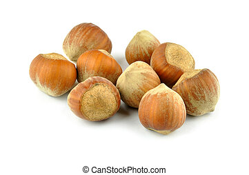 Hazel nuts isolated on the a white background