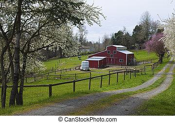 Family farm in rural Oregon - Family farm in Spring in rural...
