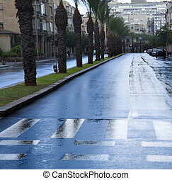 Empty Wet Winter Street - Early winter morning in Tel-Aviv,...